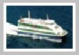 Denizcilik Firmaları