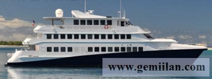 Catamaran Cruise Vessel for sale